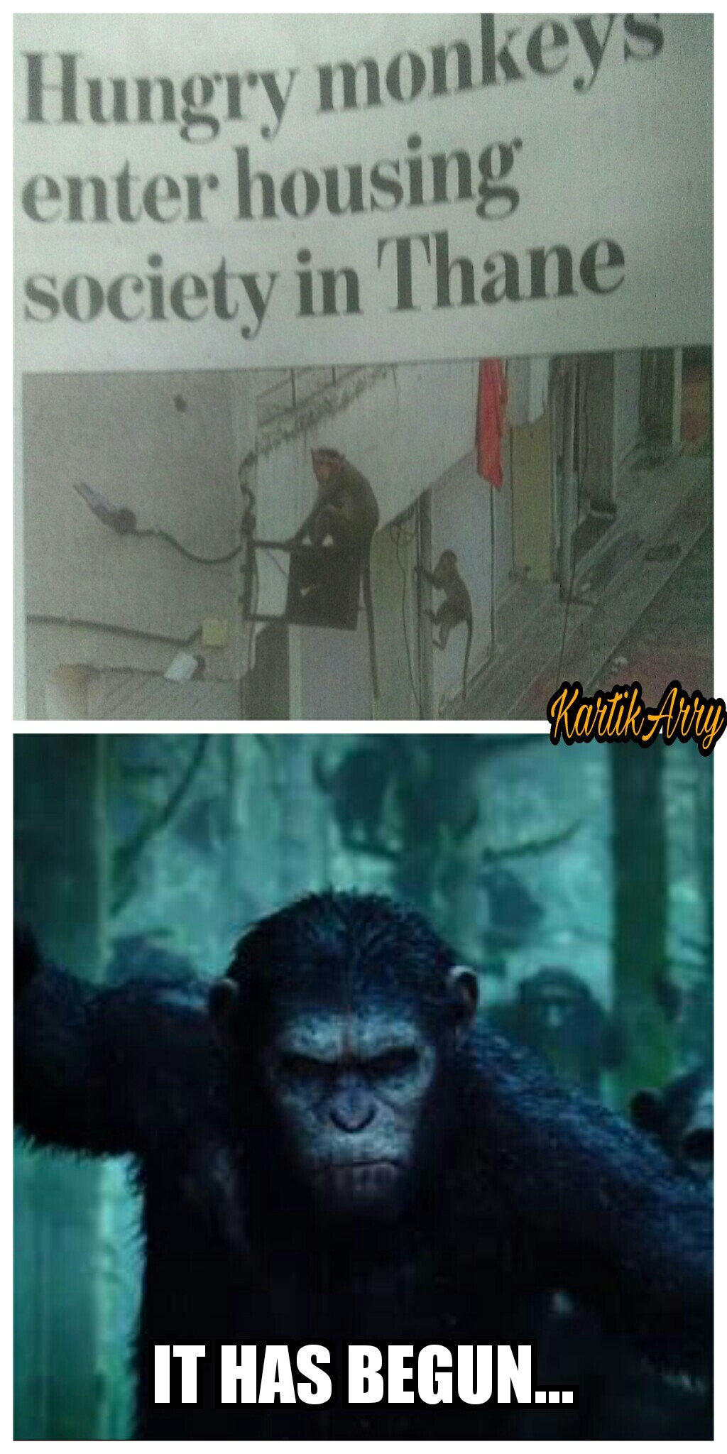 Those Damned Apes And Monkeys In Sekiro I Hate Them All 9gag