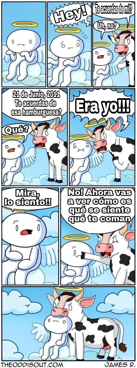 Y Empiezan Los Memes Steven Universe Comics En Espanol Latino Facebook