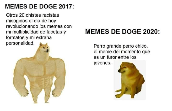 93 Mejores Imagenes De Memes Perrito Memes Perros Memes Perros