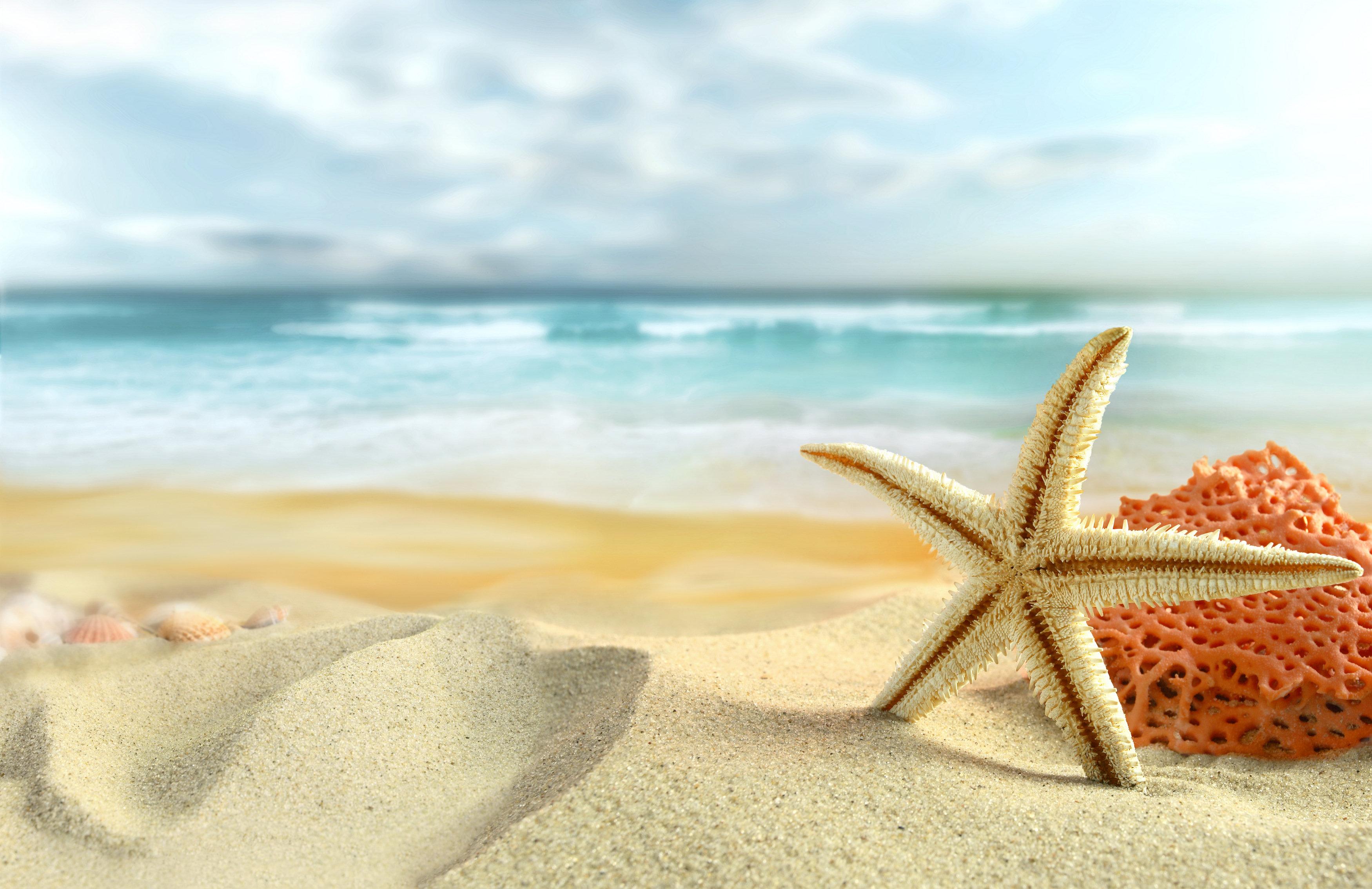 beach full hd wallpaper and background | 3500x2269 | id:277578