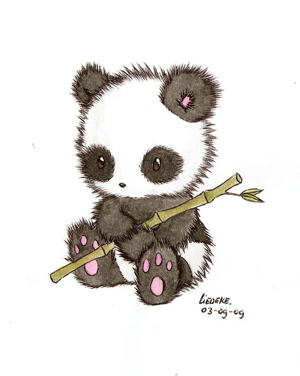 pandas pandas fan art 16256344 fanpop