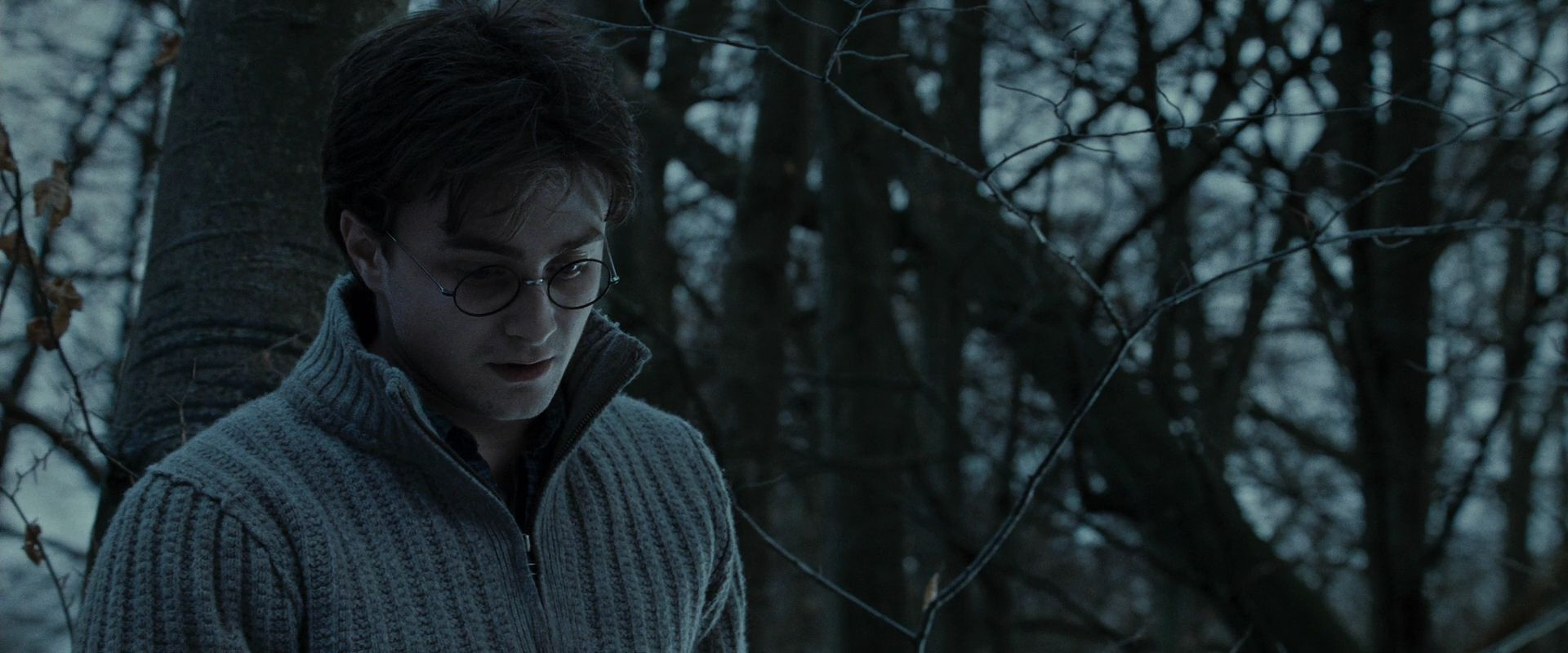 https://i2.wp.com/images4.fanpop.com/image/photos/20800000/Harry-Potter-and-the-Deathly-Hallows-Part-1-BluRay-harry-potter-20891868-1920-800.jpg
