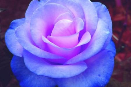 Pretty blue and purple wallpaper 4k pictures 4k pictures full pretty blue wallpaper images x pink purple and blue wallpaper hd wallpapers pretty free girly wallpapers hd long wallpapers girly wallpapers hd blue purple mightylinksfo