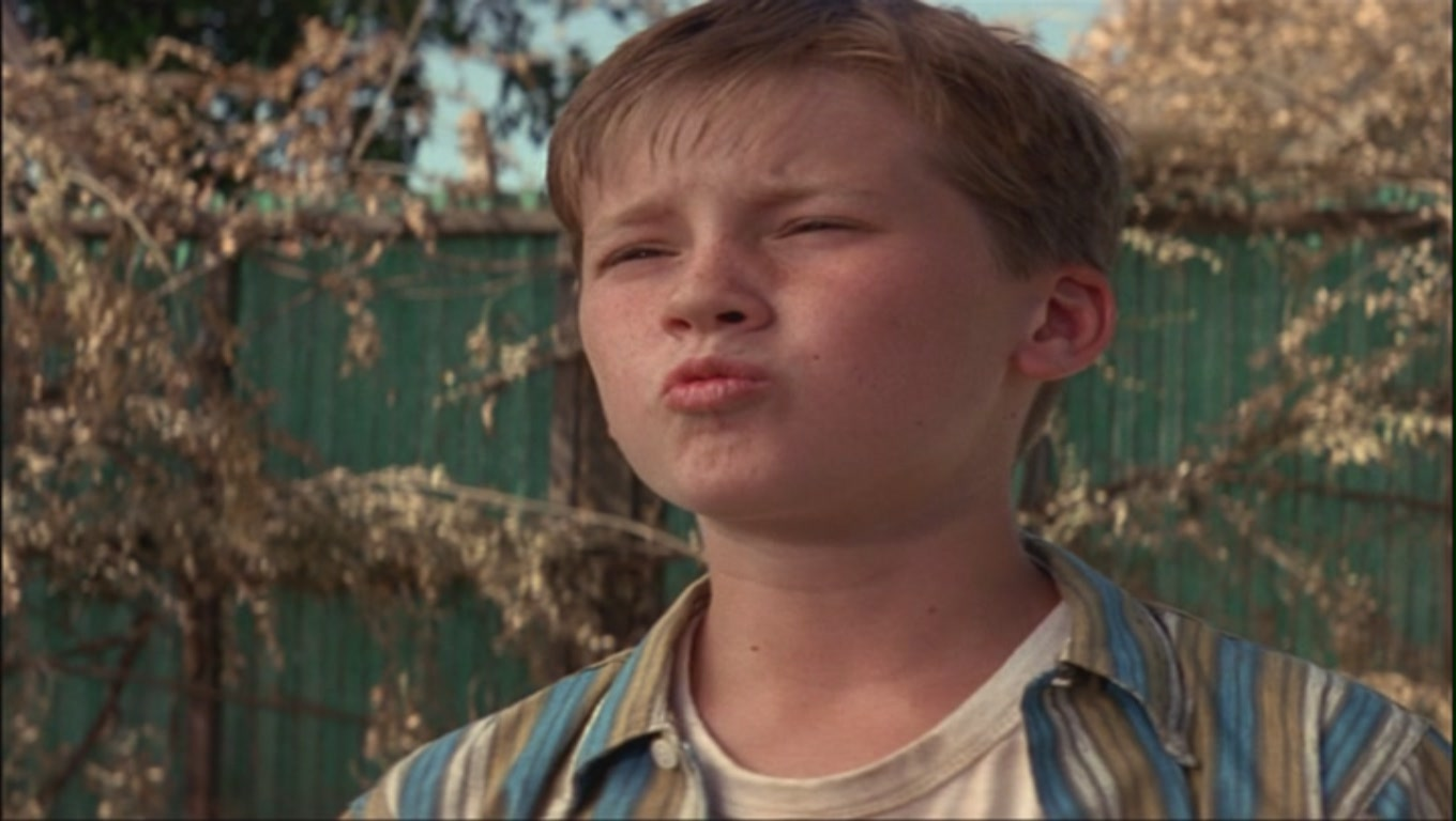 The Sandlot: The Cast of Kids Who Made it Big | The Monthly Spew