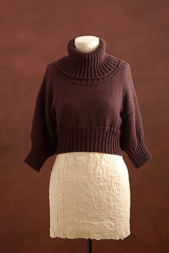 http://www.ravelry.com/patterns/library/cropped-turtleneck-2