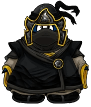 ShadowNinjaPlayerCard
