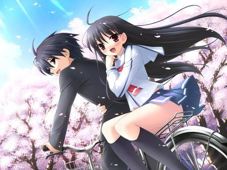 Oh, being with your love under the sakura blossoms...