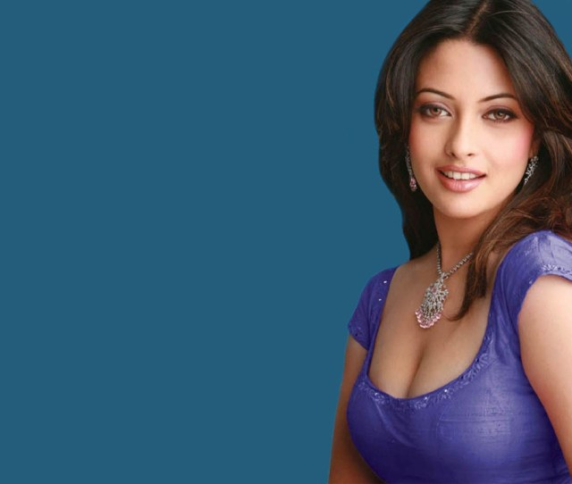 Riya Sen Images Riya Hd Wallpaper And Background Photos