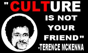 Terence Mckenna fondo de pantalla called Culture Is Not Your Friend