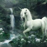 How is Funding Like Unicorns?