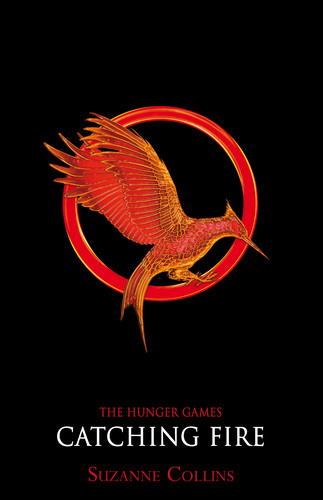 Catching Fire Promotional Poster - tribute-arena Photo