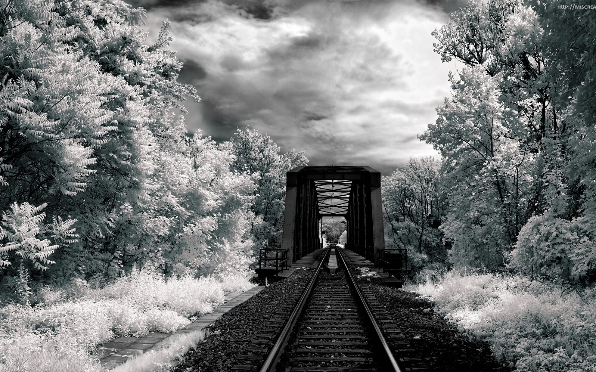 black & white full hd wallpaper and background | 1920x1200 | id:306248