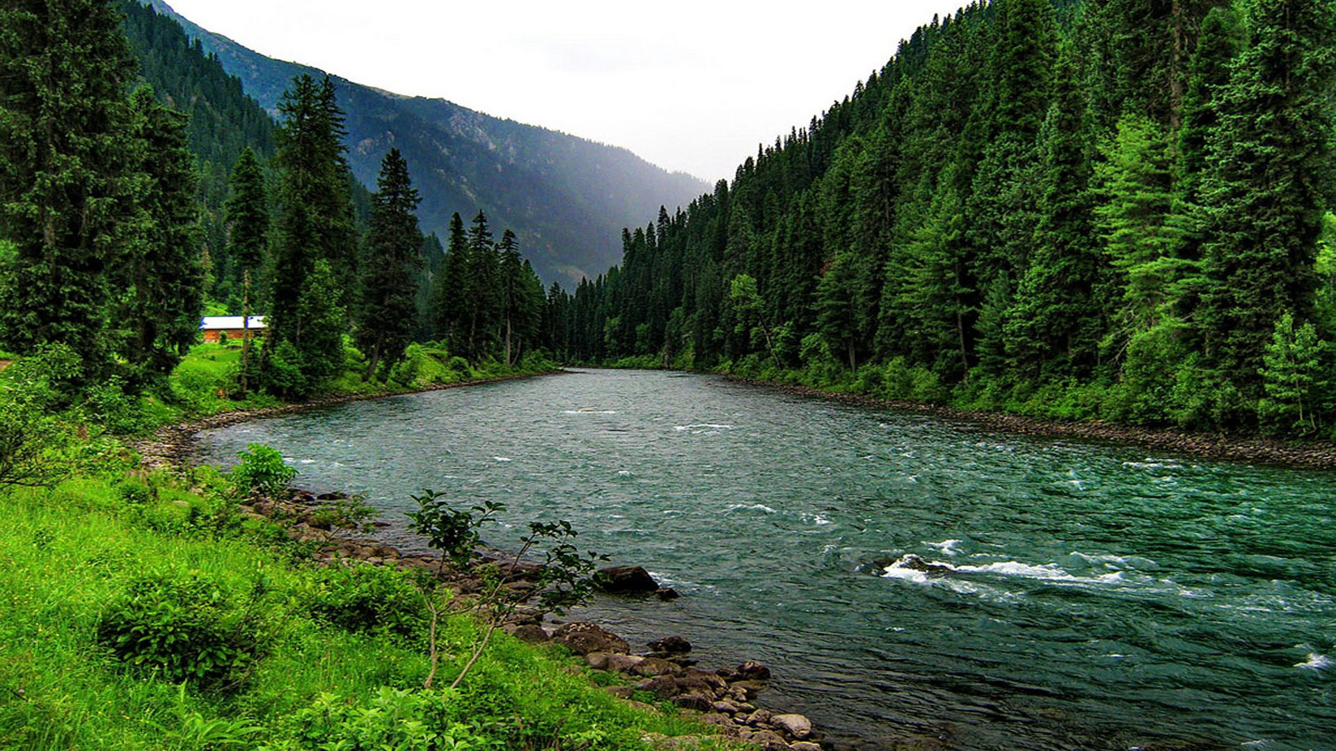 River In The Mountain Forest Hd Wallpaper