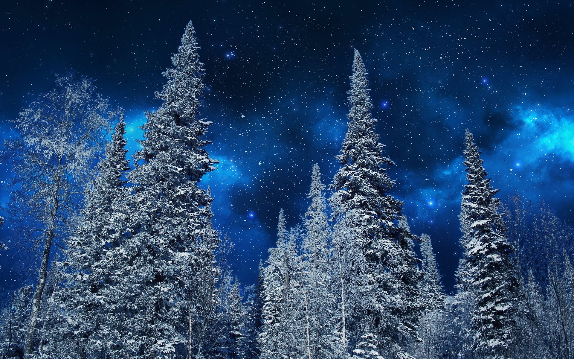 Starry Winter Night Full HD Wallpaper And Background
