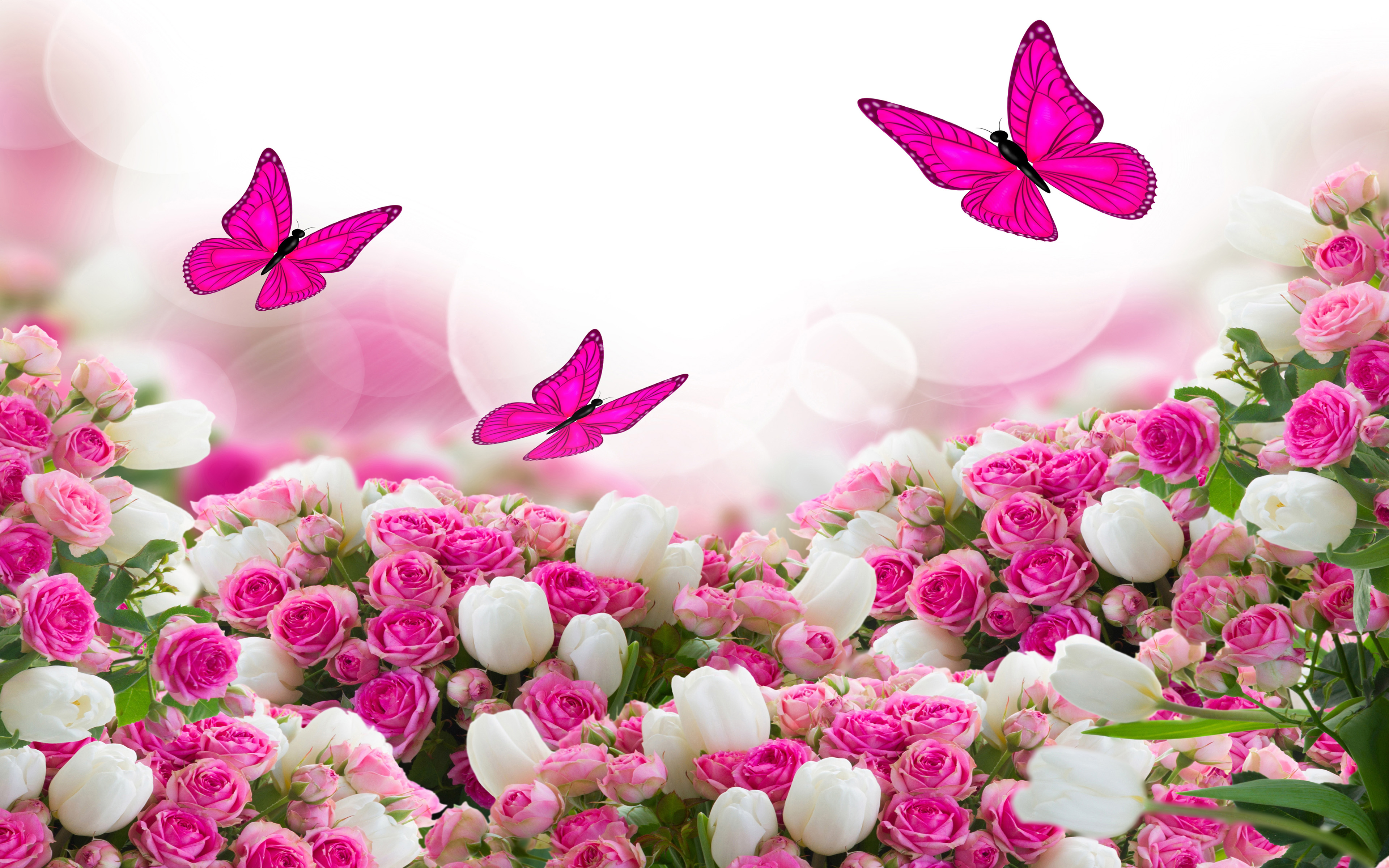 Roses And Butterflies 4k Ultra Hd Wallpaper Background Image 3840x2400 Id 997737 Wallpaper Abyss