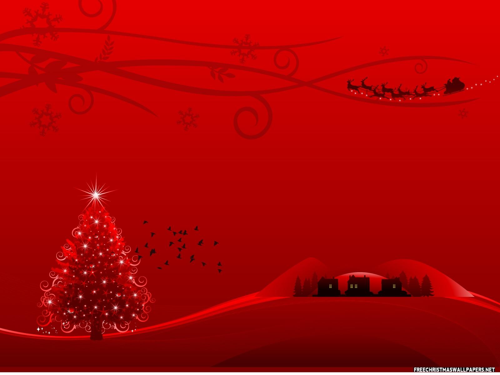 Christmas Lights Wall