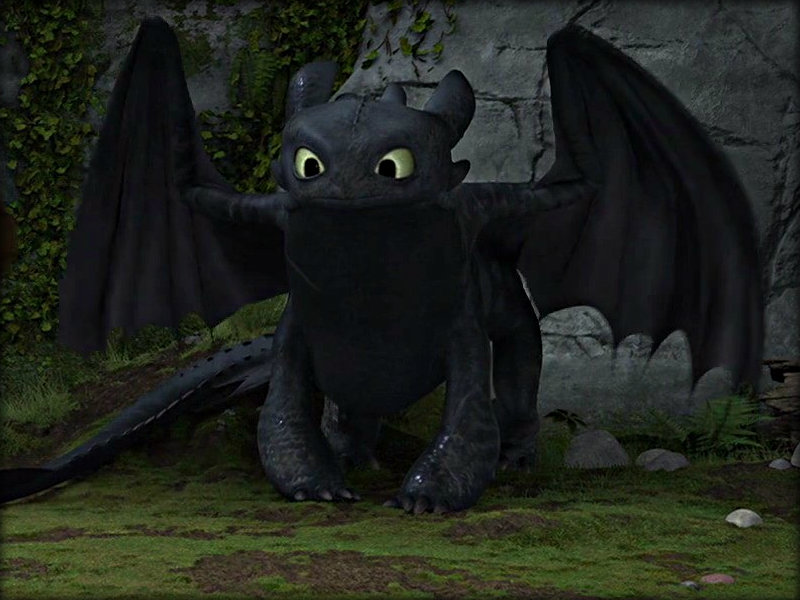 Image result for how to train your dragon toothless