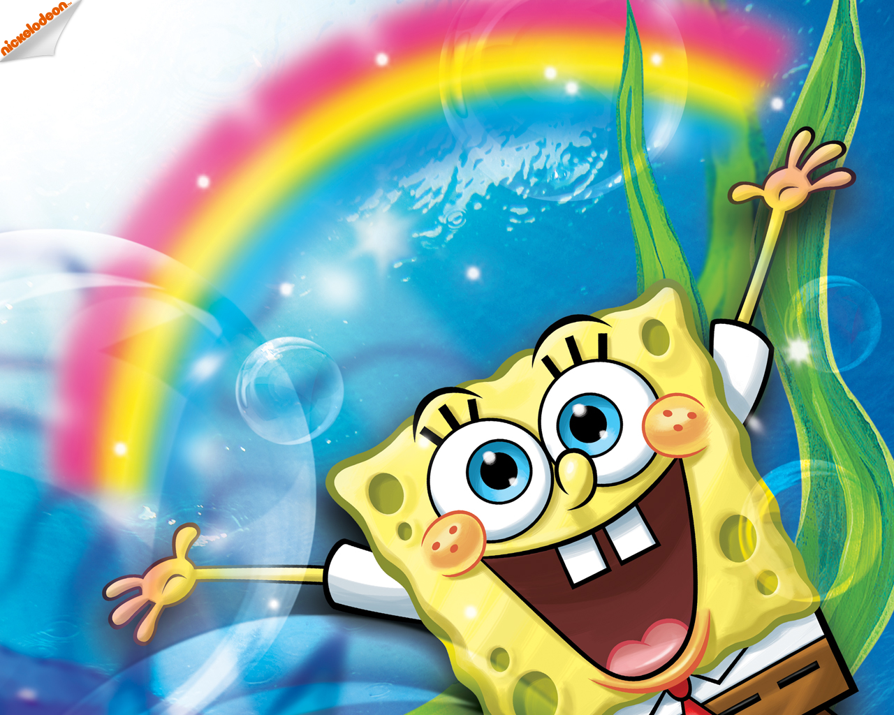 Spongebob Schwammkopf Spongebob Squarepants Wallpaper