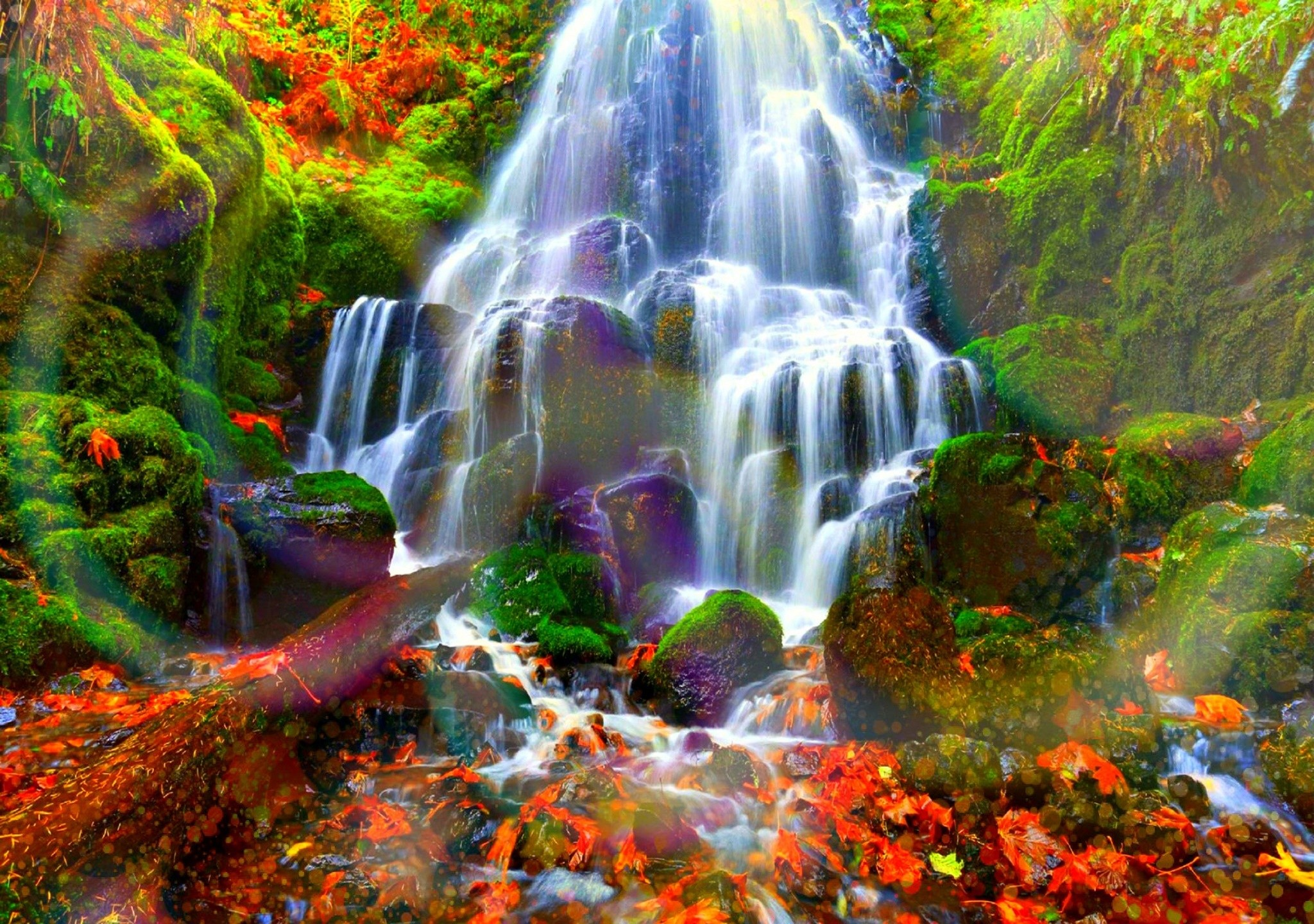 Autumn Forest Water Cascades Full HD Wallpaper And