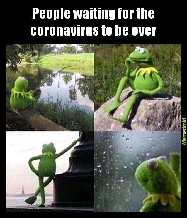 Kermit The Frog Meme Youtube