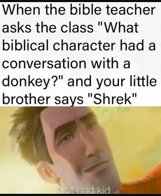 The Best Donkey Memes Memedroid