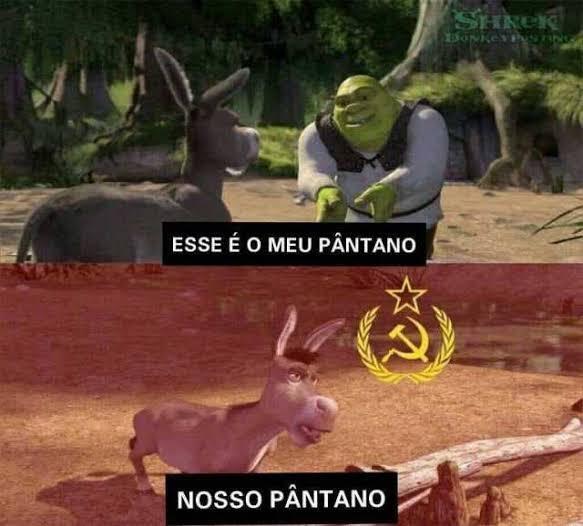 Novo Comunista Internet Explode Em Memes Apos Saida De Nelson