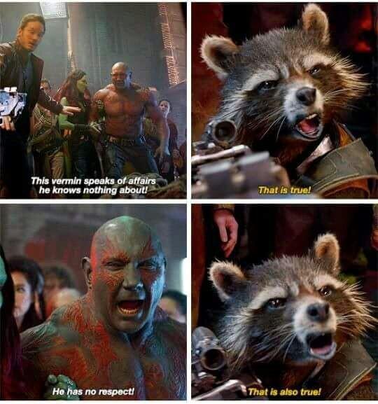 Trash Panda 2 Meme By Jessivera Memedroid