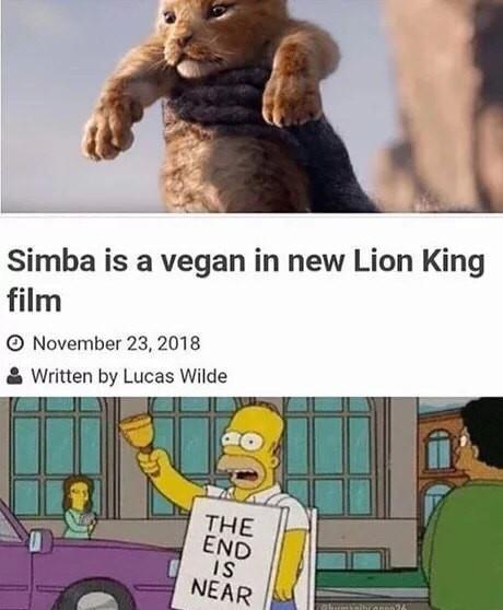 The Best Lion King Memes Memedroid
