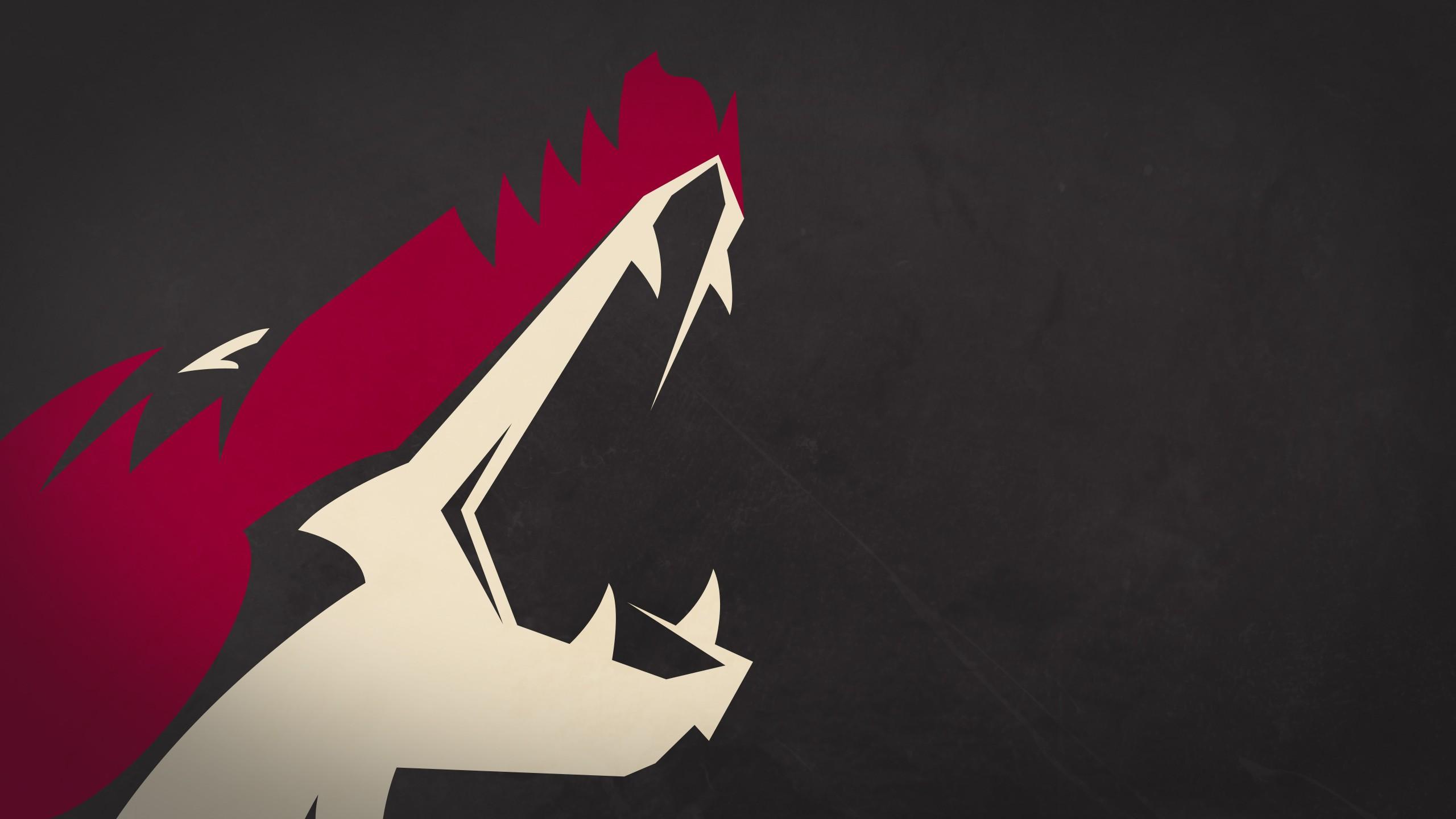 Phoenix Coyotes Background