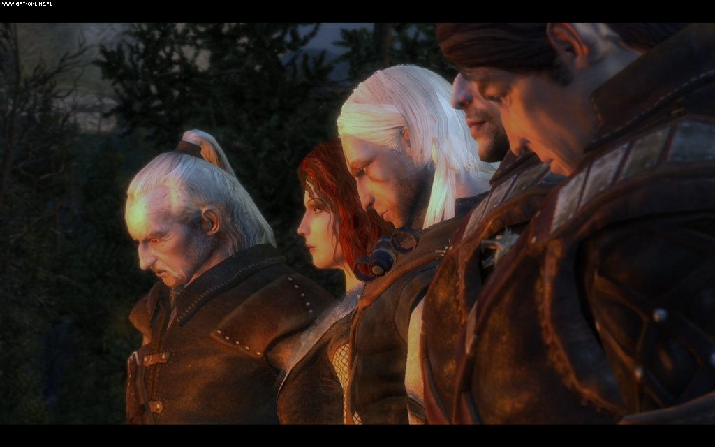 The Witcher crack