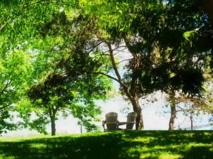 Chairs Under Tree Shade Bath ME