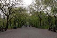 Alley, Central Park, NY