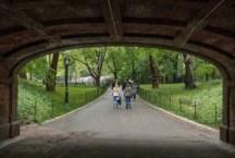 Bridge, Central Park, NY