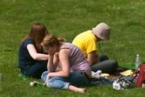Clover picnic Arboretum Frelinghuysen