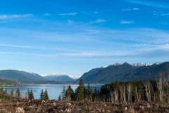 Lake, quinault, mountains, olympic peninsula, Washington