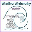 Wordless Wednesday @ ImagesByCW