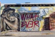Grafitti in Wynwood Walls