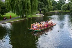 More Swan Boats