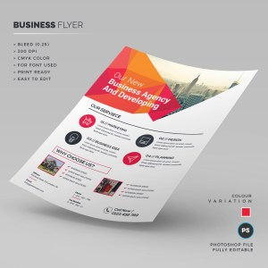 Clean Business Flyer Template