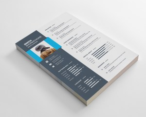 Elegant Resume Design Template