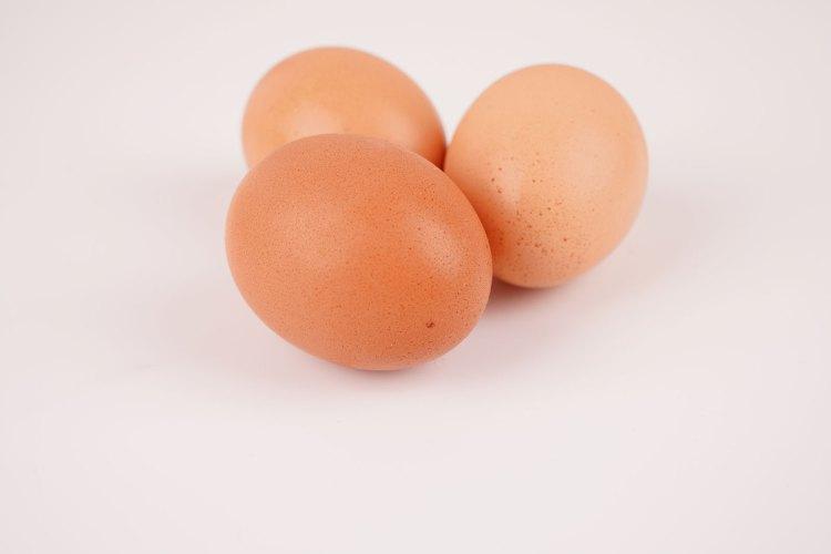 Organic eggs stock photo
