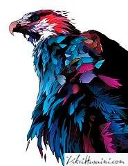burung helang, burung helang geometric