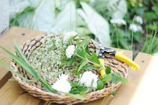 Garden flower gatherings for an arrangement