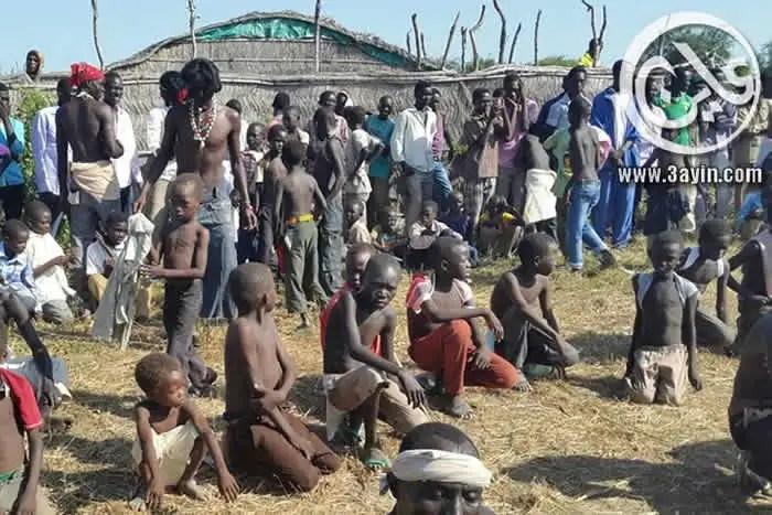 جدع النار طقس الحصاد الموروث في النيل الازرق