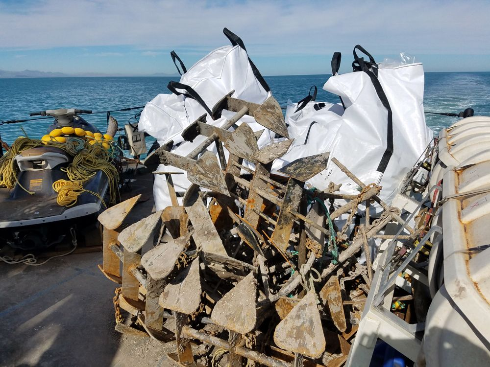 The anchors and bagged nets recovered in the span of two nights in the vaquita refuge. Copyright Greg Joder/Sea Shepherd.