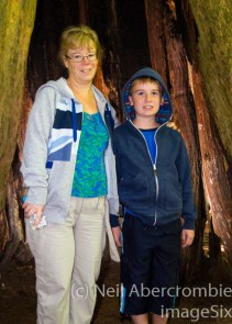 Cathedral Grove-6