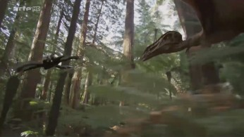 MDP_anchiornis_pterosaure