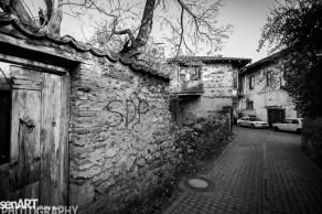 2016yds_sen6685 © LEVENT ŞEN