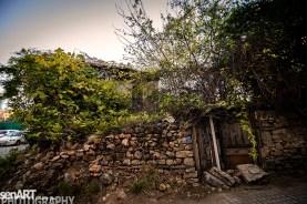 2016yds_sen6713 © LEVENT ŞEN