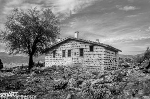 pr2016aaef_10© LEVENT ŞEN